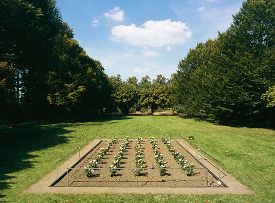 3A,-[Running-Lines]-Querbeet,-Vorgebirgspark,-Koeln-2005